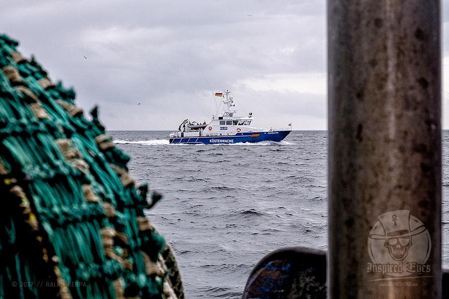 """Auf Fangfahrt vor Fehmarn mit Mike Hilger und seiner Crew auf der """"SB4 ANDREA"""""""