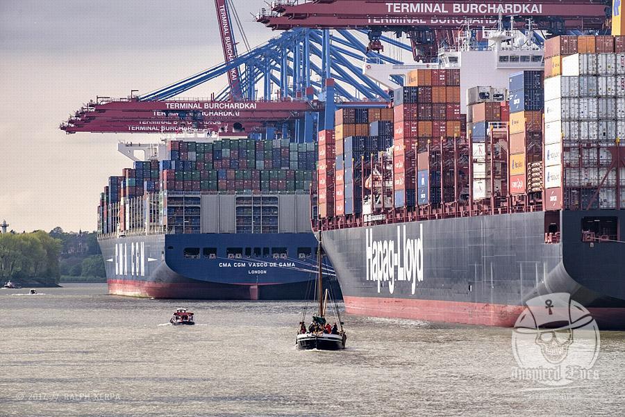 Containerschiffe am Containerterminal BURCHARDKAI im Hamburger Hafen