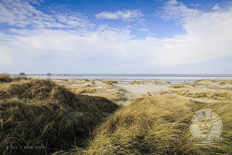 Dünenlandschaft im Winter 2014 an der Nordsee am Strand von St. Peter-Ording // Foto: Ralph Kerpa