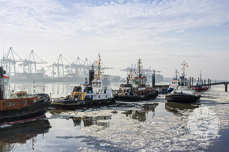 Schlepper liegen am Anlieger Neumühlen im Hamburger Hafen // Foto: Ralph Kerpa
