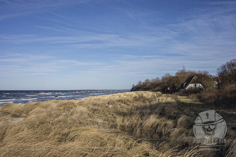 """Strandabschnitt am """"Schwarzen Busch"""" auf der idyllischen Insel Poel // Foto: Ralph Kerpa"""