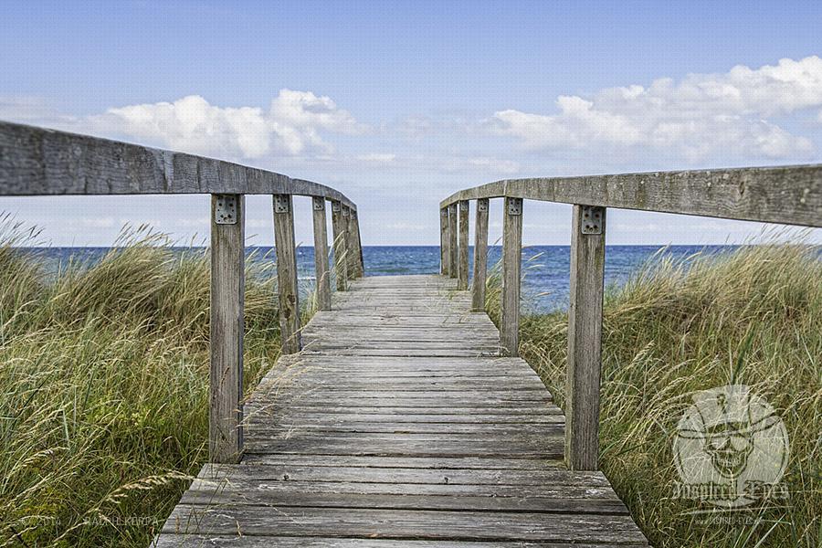Steg am Strand von Behrensdorf in der Hohwachter Bucht // Foto: Ralph Kerpa